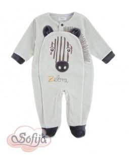 Babgrow with Zebra